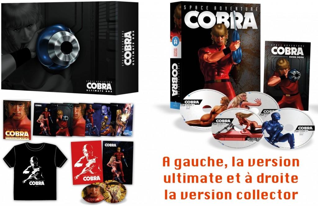 Cobra-versions